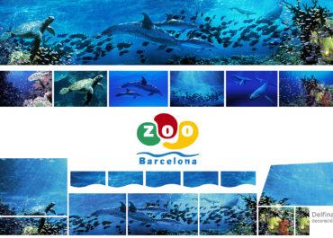 Zoo Barcelona Delfinario
